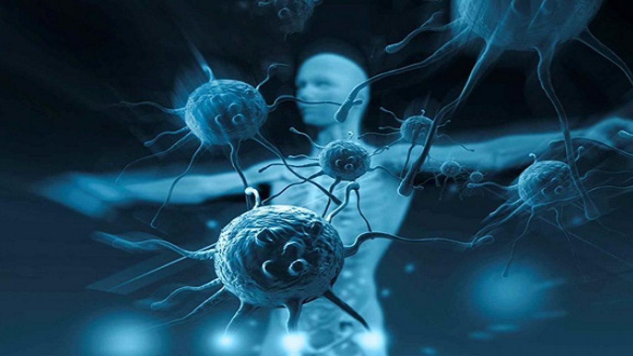 Miễn dịch khối u và liệu pháp tự miễn dịch