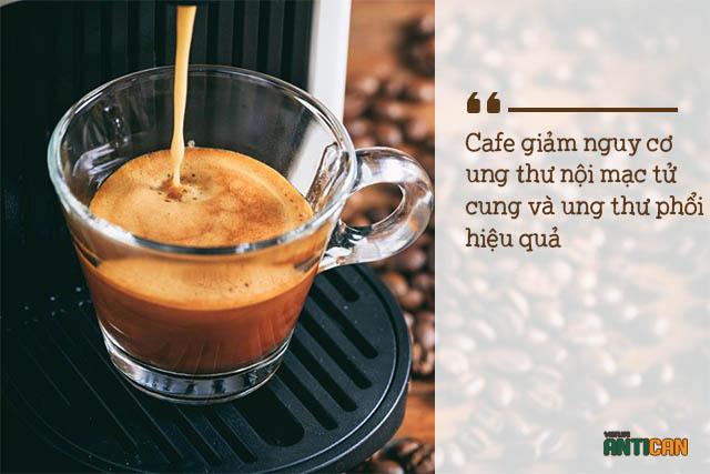 tin đồn về ung thư: cafe giúp ngăn ngừa ung thư hiệu quả