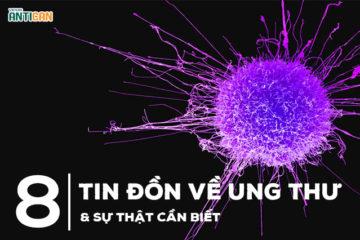 8 tin đồn về ung thư và sự thật bạn nhất định phải biết