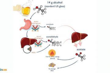 Rượu và nguy cơ ung thư gan